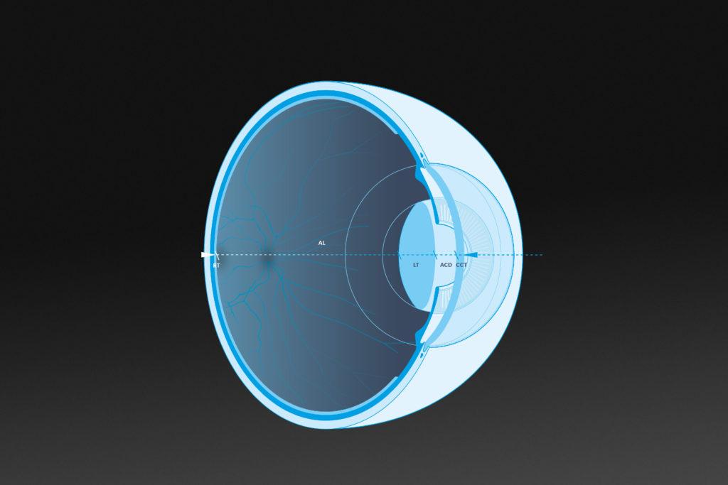 Lenstar Eye Crossection
